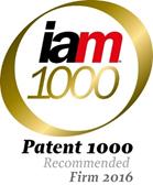 IAM 1000 Firm 2016